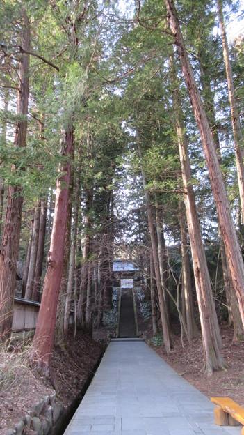 安楽寺(上田市)