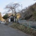 矢沢城(上田市)