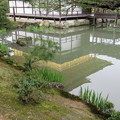金閣寺(北山 鹿苑寺。京都市)