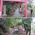 写真: 二葉姫稲荷神社(京都市北区)