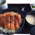 Photos: 辛夷(中央道下り 双葉SA)