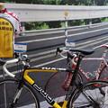 Photos: 弱虫ペダル 総北高校 自転車競技部 ロードバイク