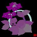 写真: 額の花