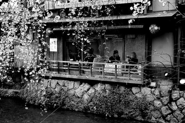 Photos: 春の宵