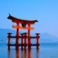 Photos: 厳島神社 4
