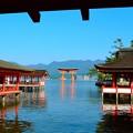 Photos: 厳島神社 2