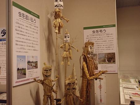 自然博物館04