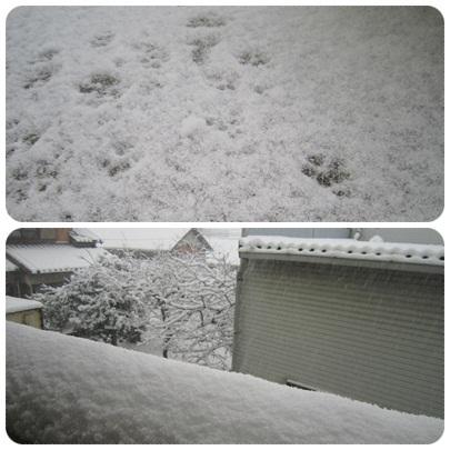 20120202 雪1