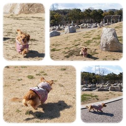 20120211 お散歩4