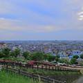 大乗寺丘陵公園  ツツジ(4) 街並み