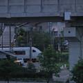 北陸新幹線の高架橋の下を走る特急電車