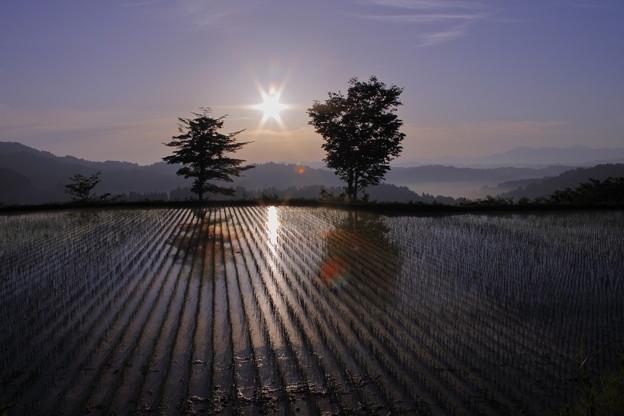 星峠 朝日☆ と棚田