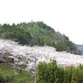 写真: 大杉ダム自然公園