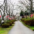 Photos: 大杉ダム自然公園