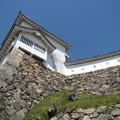 姫路城 石垣