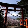 Photos: 新倉富士浅間神社の鳥居...と富士山