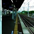 Photos: 新小岩駅