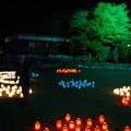 橿原神宮の写真0116