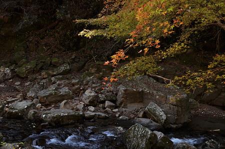 赤目四十八滝の紅葉・5