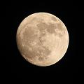 Photos: 4月5日 月夜