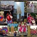 Photos: 東北六魂祭2015秋田へ