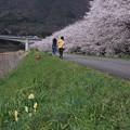 Photos: maruyamagawa_DSC02683