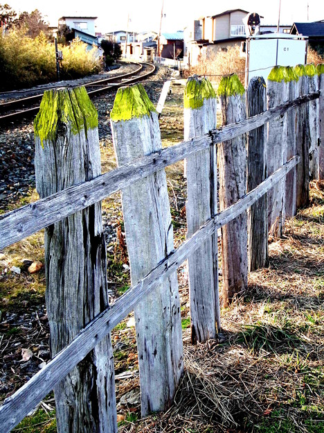 枕木柵と鉄路