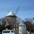 Photos: 【3月24日】風車などを撮ってきたよ(その3)