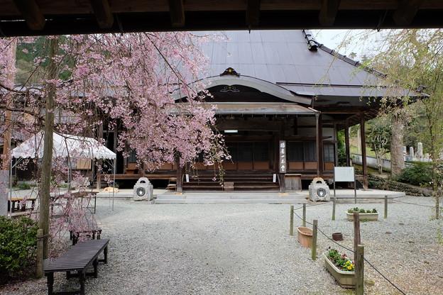Photos: 光福寺の本殿