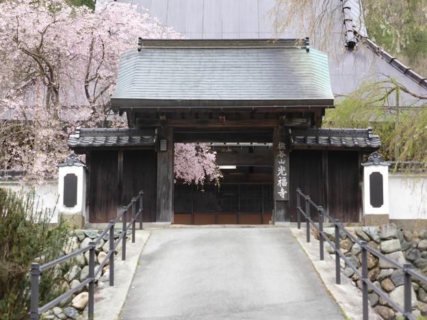 Photos: 光福寺の山門