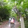 Photos: 旧天上寺参道