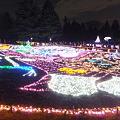 昭和記念公園のイルミネーション#11
