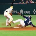 Photos: 福岡ヤフードーム?