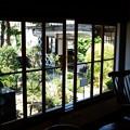 旧澤村邸の庭
