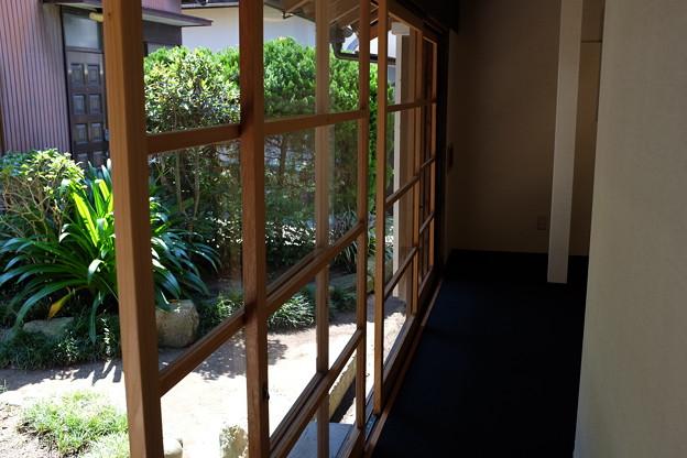 旧澤村邸の廊下と緑