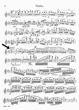 中野・江古田 バイオリン 個人レッスン ヴィオラ 吉瀬弥恵子 ワイズ音楽教室 弾かないところ